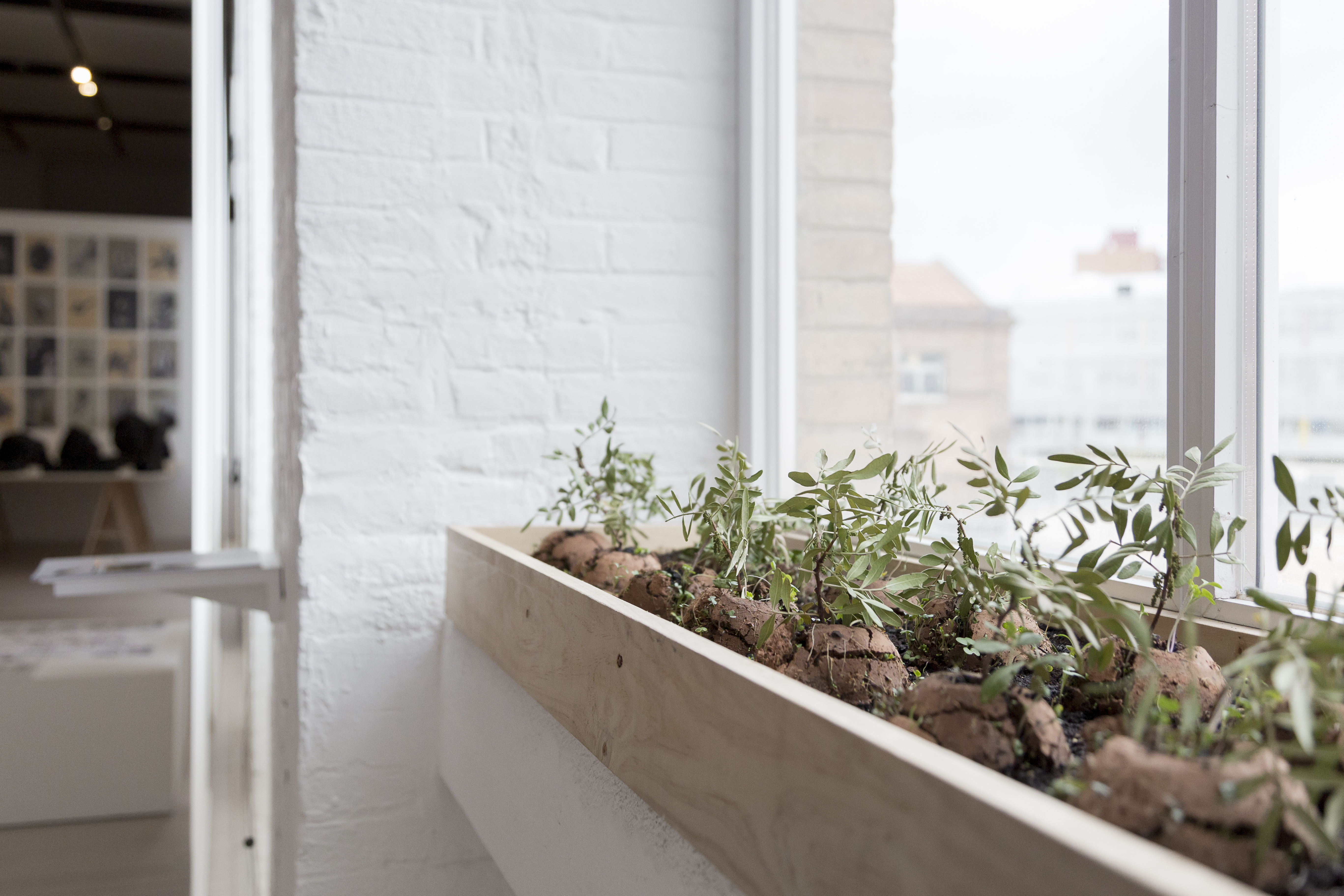 """""""Bioloop. Collserola conquereix Barcelona"""", de Nutcreatives EN RESiDÈNCiA a l'institut Joan Boscà (2012-2013). Inclosa a l'exposició """"Aquí hem trobat un espai per pensar. 10 anys EN RESiDÈNCiA"""" (2019, Fabra i Coats-Centre d'art). ©Eva Carasol"""